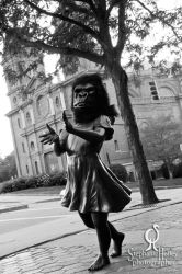 Asheville of the Apes by stephlholley