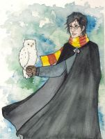Harry and Hedwig by Pinkutti