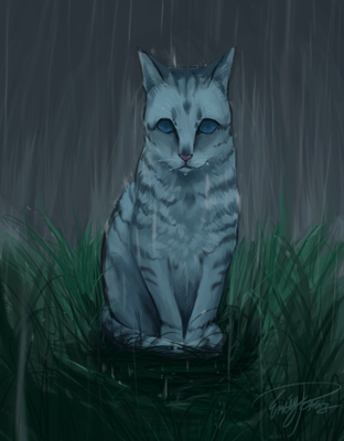 Jayfeather: Warriors by WildWolvess