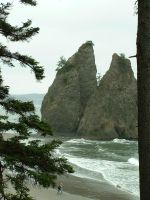 Sea Stacks by nwinder