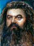 Hagrid Harry Potter Sketch Card by Stungeon