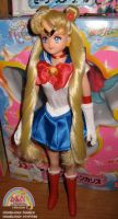 Sailor Moon Irwin Doll repaint by OWcollection