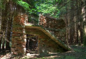 Construction in the woods - HDR by yoctox