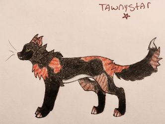 Tawnystar by Lupin-wolf