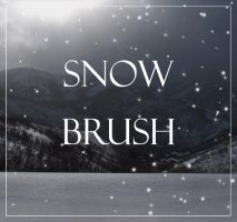 snow brush by WCS-Wildcat