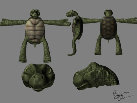 turtleman by rio3d