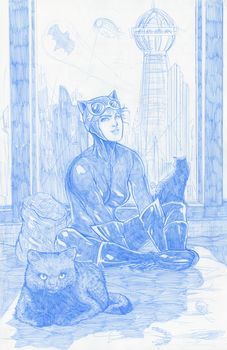 Catwoman Pencils Cover Concept by Pixelated-Takkun