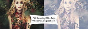 (3) PSD Coloring by CatchMeBabyy