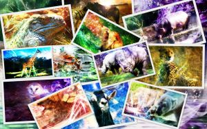 Wildlife Wallpaper Pack by 878952