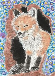 Young fox watercolor  aceo painting by tulipteardrops