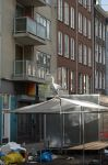 Amsterdam 10 by hippo2