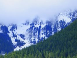 Snow, Trees and Cloud by Westcoastspirits