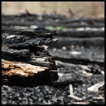 Charred by WakeUpDormouse