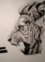 Lion Cry by Flobre