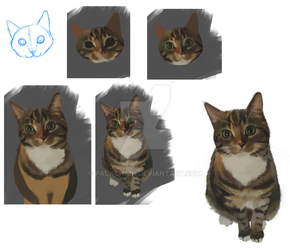 Another cat drawing progress by Paukchain