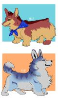 Corgi Adopts [2/2] Open by puppisama