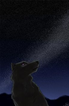 Shadow In The Night Sky Wallpaper by MariannaNight