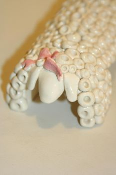 White seep with pink ribon by ooty