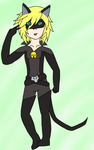 Chat Noir by Winibie