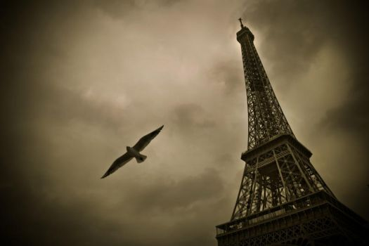 Eiffel Tower 1 by Phil-Norton