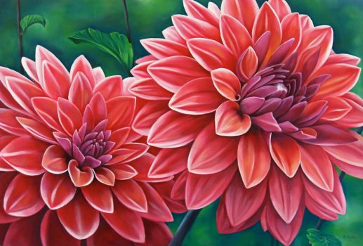 Dahlias by TernFeather