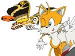 Tails meets Fairy Mothra by BigJohnnyCool