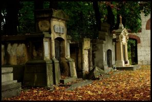 Old Cemetery III by only-melancholy