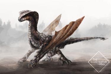 Wyvern by TheIllustrativeMan