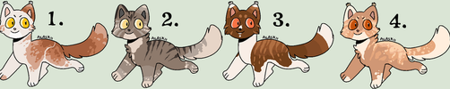 Closed - Pumpkinseed Litter #14 by Sukida-Adopts