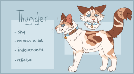 Thunder ref by pit-bully