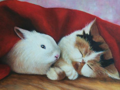 Cat and Rabbit by Damaride