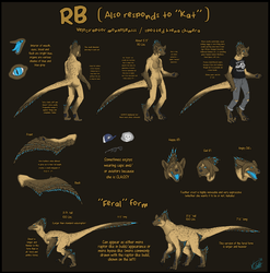OUTDATED RB Ref. Sheet by RaptorBarry