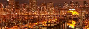 False Creek Night Panorama by tt83x