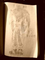 Sonic Rolls Around at the Speed Of Sound(Profile)! by KuraiJinx