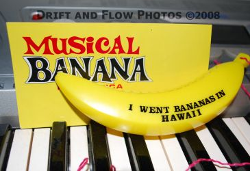 Musical Banana Keys by driftandflow