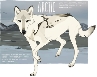 arctic - adoptable [closed] by sighthounds