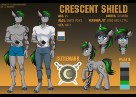 Crescent Shield reference [commission] by Margony