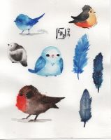 Watercolor birbs by CAMURI2233