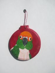 Gold Capped Conure Ornament by MadalynC