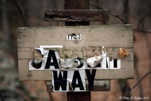 Caseway, Take 2 - 1783  by peterkopher