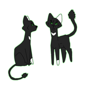 Crowpaw | Reference Request by Sockofpancakes