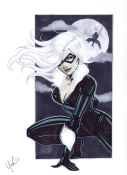 Black Cat by Protokitty