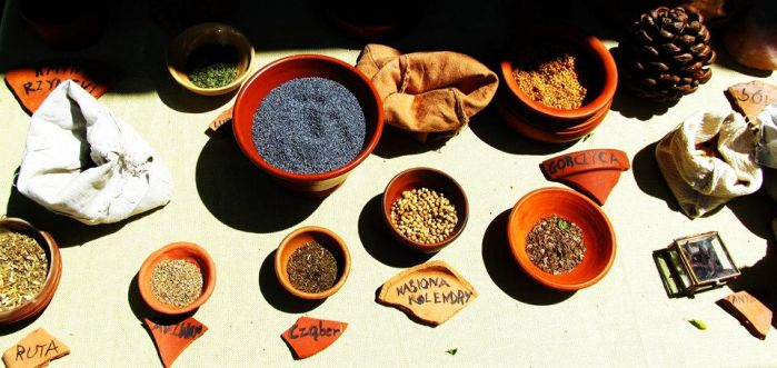 spices by Irlandka