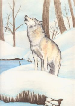 The howl of the wolf by melyanna