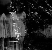 virgin suicides. by moumine