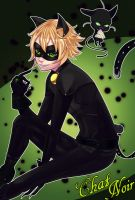 Chat Noir by J3Mimi