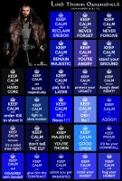 TGD #9: Keep calm in Middle-Earth with Thorin by PeckishOwl