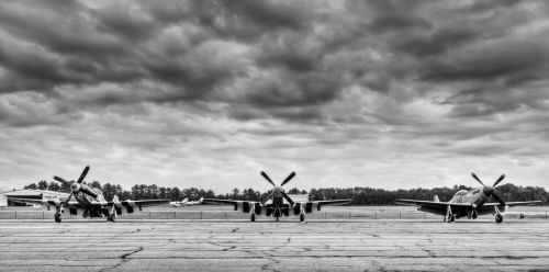 Mustang Row by aviationbuff