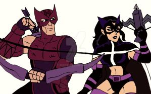 Marvel/DC: the Hawkeye and the Huntress by xero87
