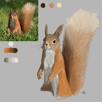 07 14 Squirrelpaint by JKRiki